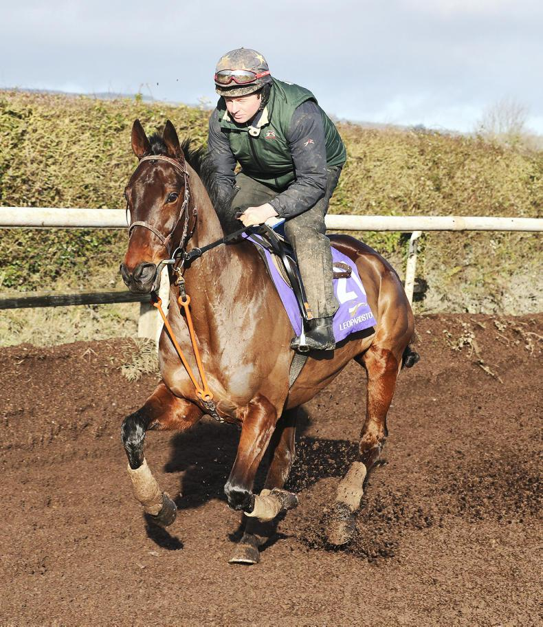 Willie Mullins outlines hopes and dreams for Cheltenham contenders