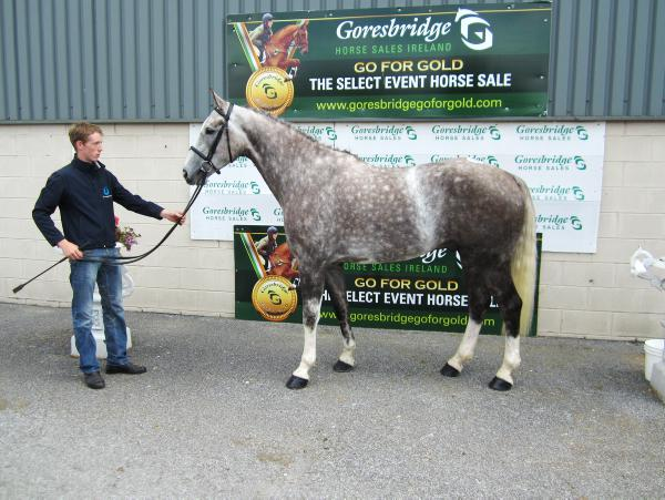 Top price of €12,000 and solid trade at Goresbridge
