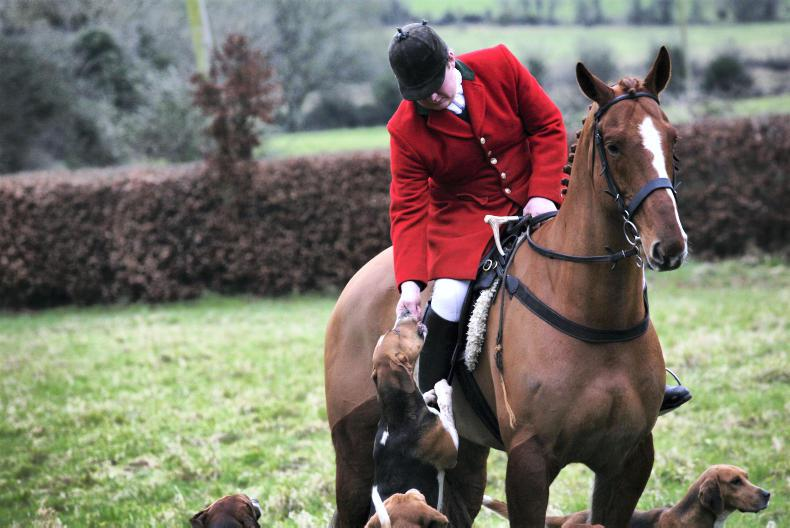 A DAY IN THE LIFE OF A HUNTSMAN: Fergus Stokes