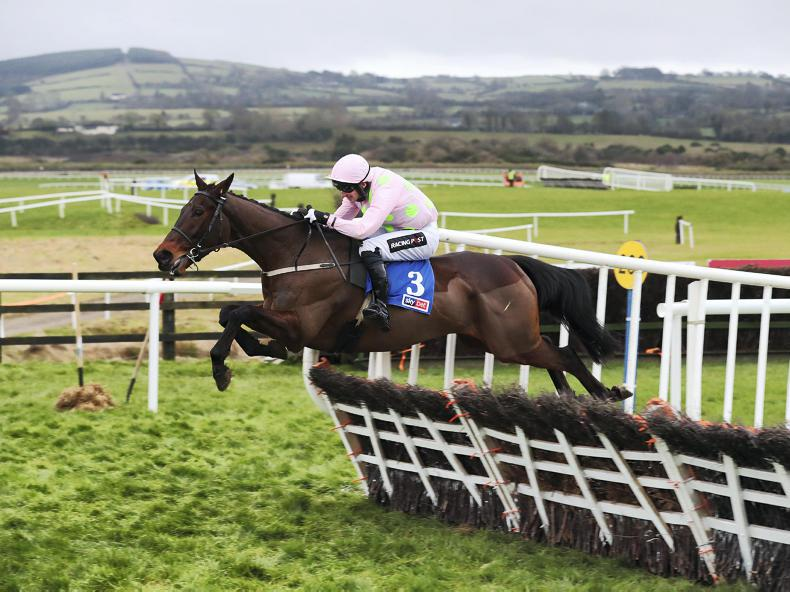 Getabird in full flight for Supreme Novices' Hurdle at Cheltenham