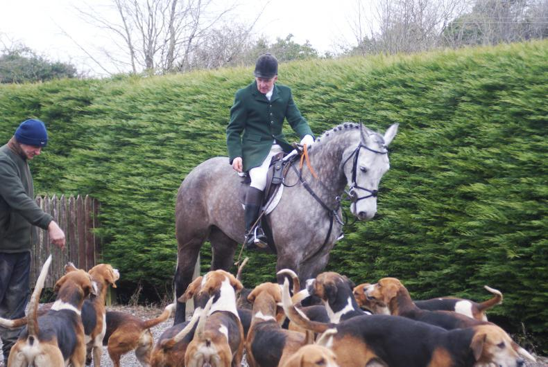 Irish Horse World Fixtures, March 10th 2018