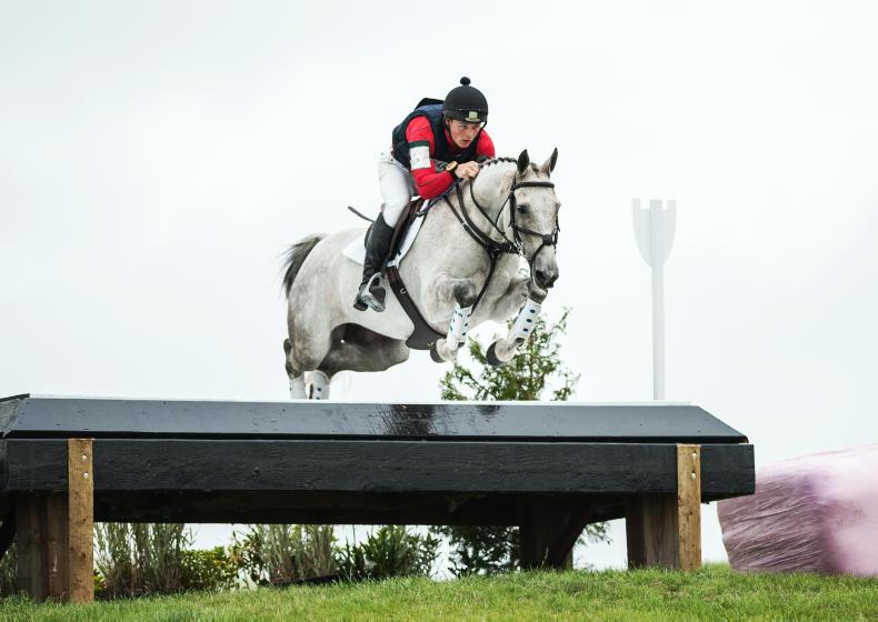 EVENTING:  Whelan won't hit the front too soon