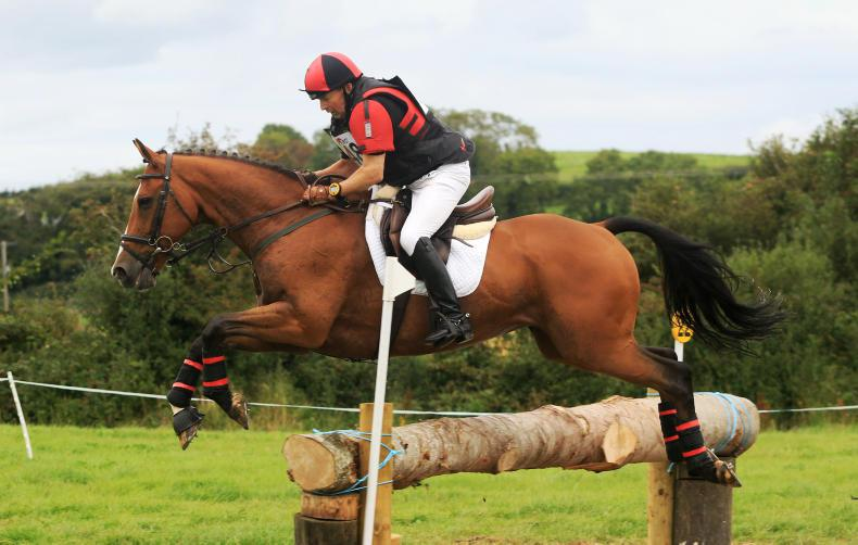 EVENTING:  Amateurs on top in Flexi eventing series