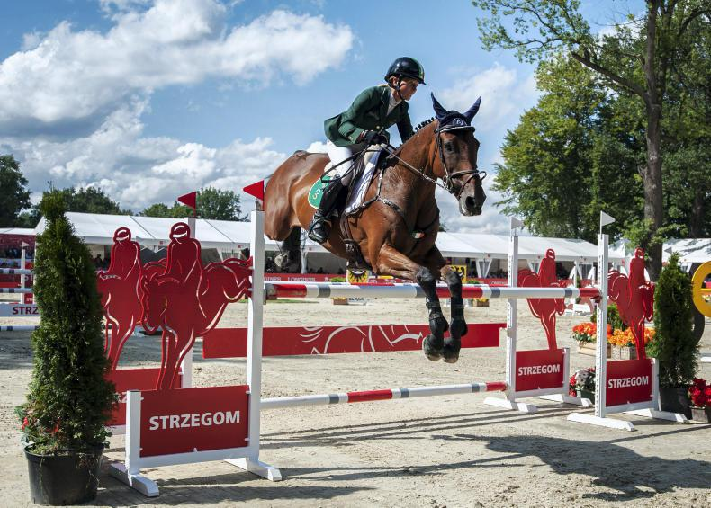 EVENTING FUNDING:  Chasing medals on a tight budget