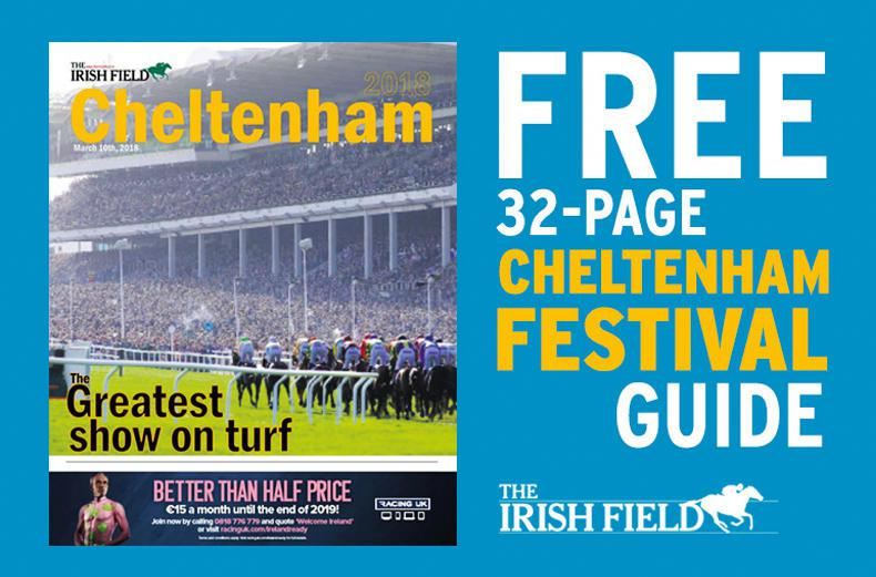 FREE Cheltenham Guide in Saturday's The Irish Field