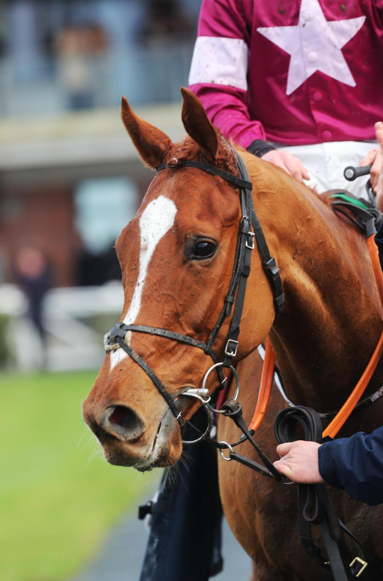 CHELTENHAM PREVIEW: J.P finds manna from heaven!