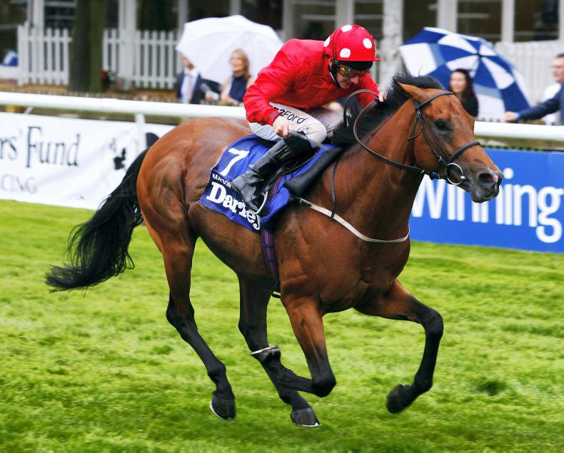 SIRE REVIEWS: Mayson : Standing at Cheveley Park Stud