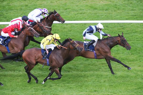 Fiesolana is first Group 1 winner for Aussie Rules