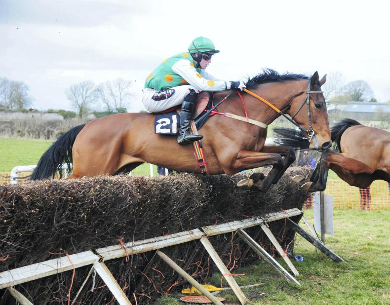 HORSE AND JOCKEY SUNDAY PREMIER HARRIERS: The Big Getaway's smart victory