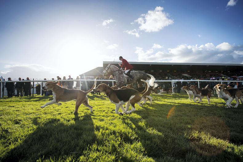 AROUND THE COUNTRY:  Punchestown gearing up for The Big Hunting Hooley