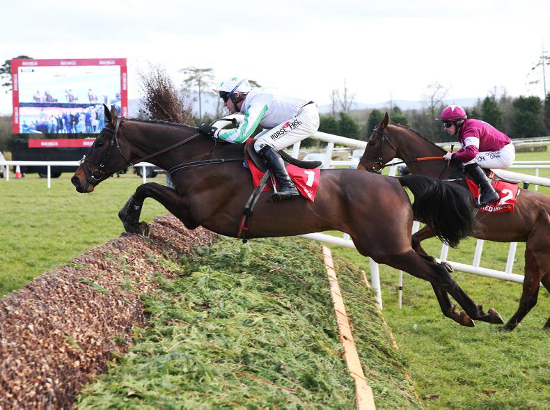 Our Duke bids to give Jessica Harrington back-to-back Gold Cups