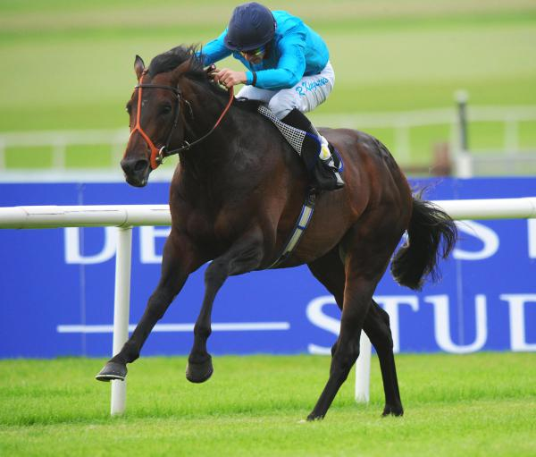 Panther was simply the best horse