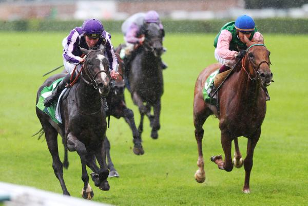 Gallante still in Arc picture