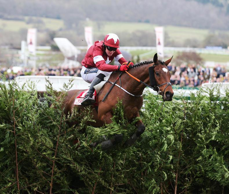 CHELTENHAM WEDNESDAY: Tiger would not Roll over