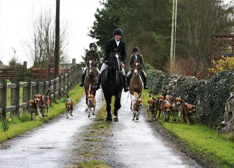PONY TALES:  Youngsters take over the horn!