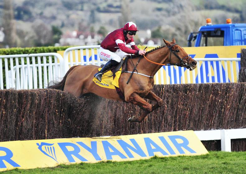 VIDEO: Balko goes with the Flos at Cheltenham