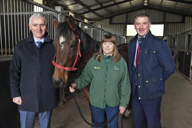 NEWS: Equine rehabilitation unit plans in place for Castlerea Prison