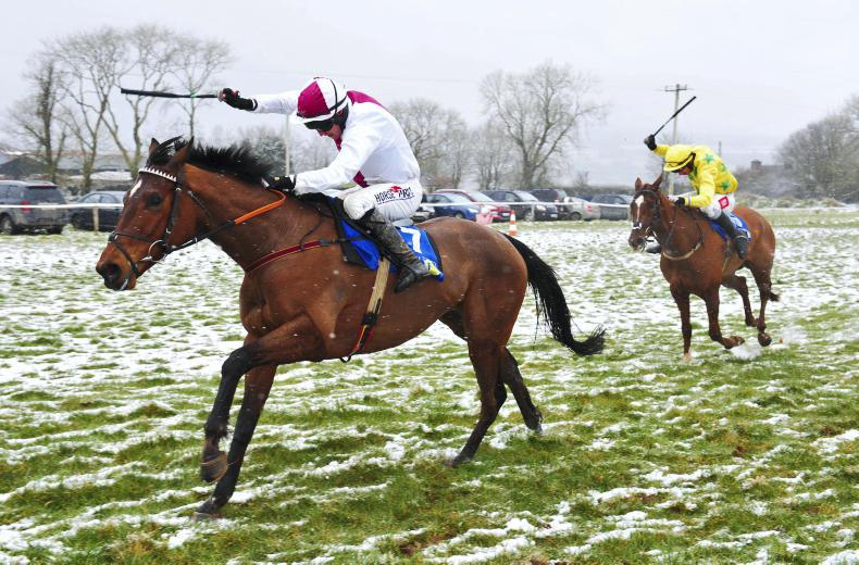 DROMAHANE SUNDAY DUHALLOW FOXHOUNDS: Snow did not deter Minella Indo's victory