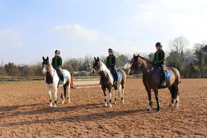 PONY TALES:  All welcome to Enniskillen open day