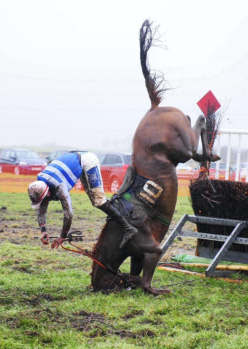 EOGHAIN WARD: Risks associated with horse falls on the point-to-point track
