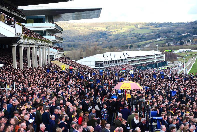 RORY DELARGY: Cheltenham complaints – got a gripe or get a grip?