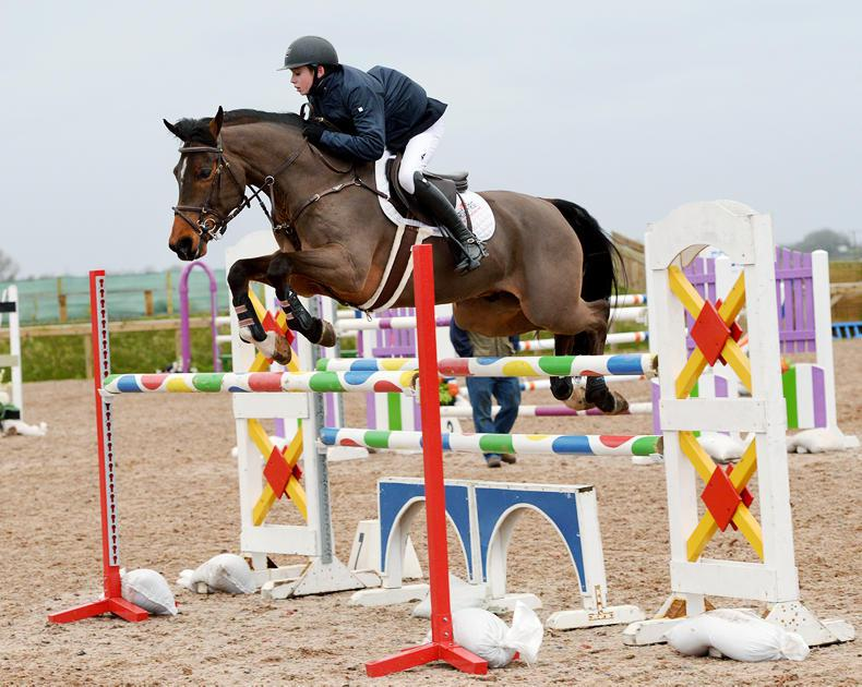 AROUND THE COUNTRY:  Top pony action at Portmore