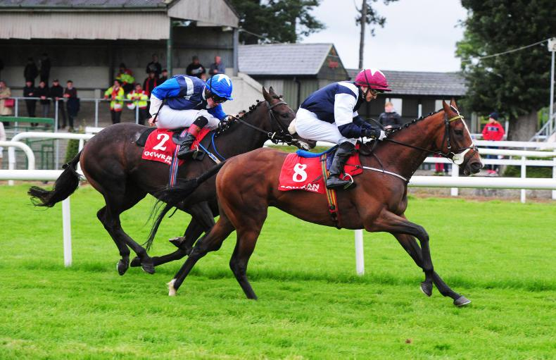 NAAS SUNDAY PREVIEW: Stay Lucky in the Lincolnshire