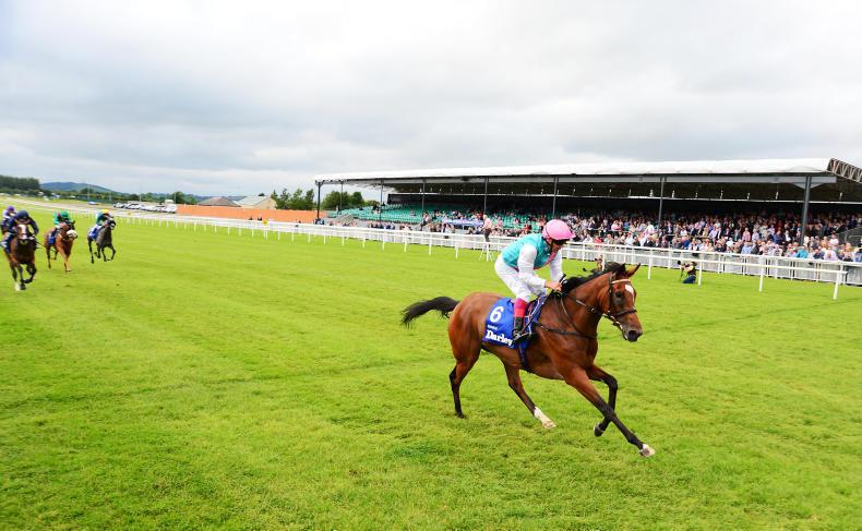 Enable and Cracksman given Curragh option