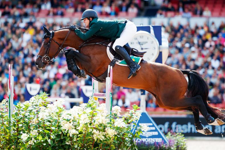 BREEDING GUIDE 2018: Continental sires top show jumping rankings