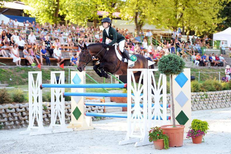 BREEDING 2018: Focus needed to breed winning ponies