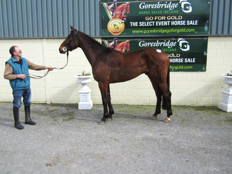 GORESBRIDGE SALES:  Sparkling trade returns top price of €13,500