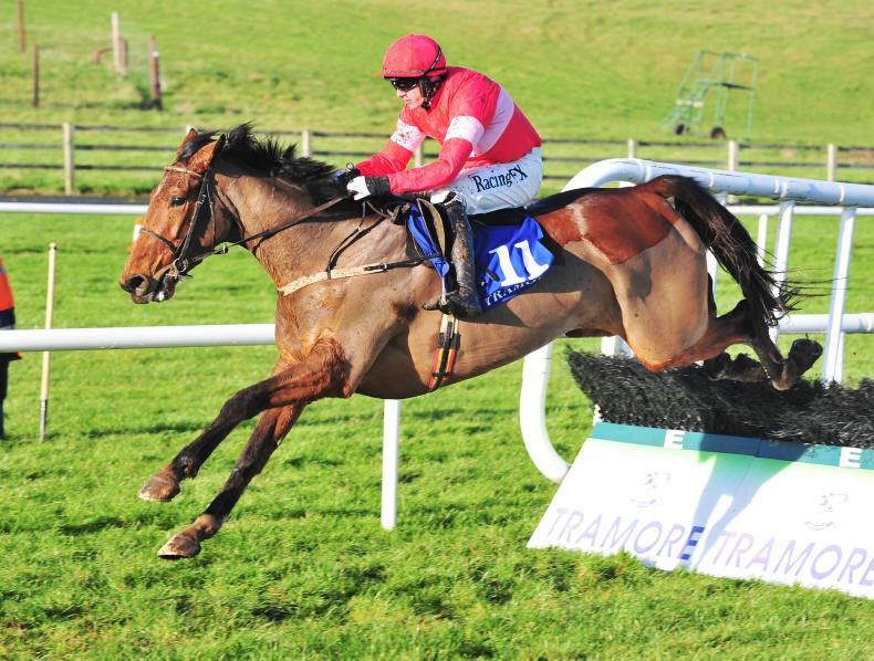 FAIRYHOUSE SUNDAY PREVIEW: Laurina in class of her own
