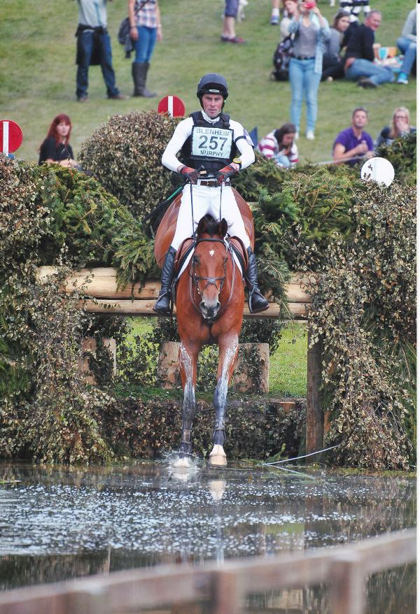 Murphy best of the Irish while Whittington wins Blenheim