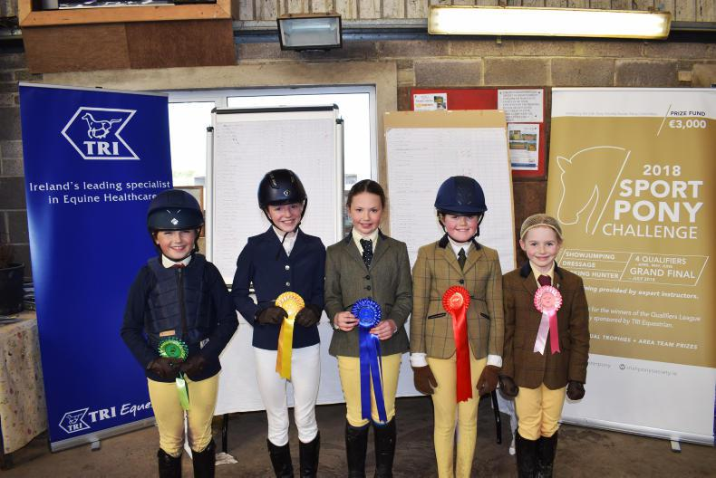 AROUND THE COUNTRY:  Big interest in Sports Pony Challenge