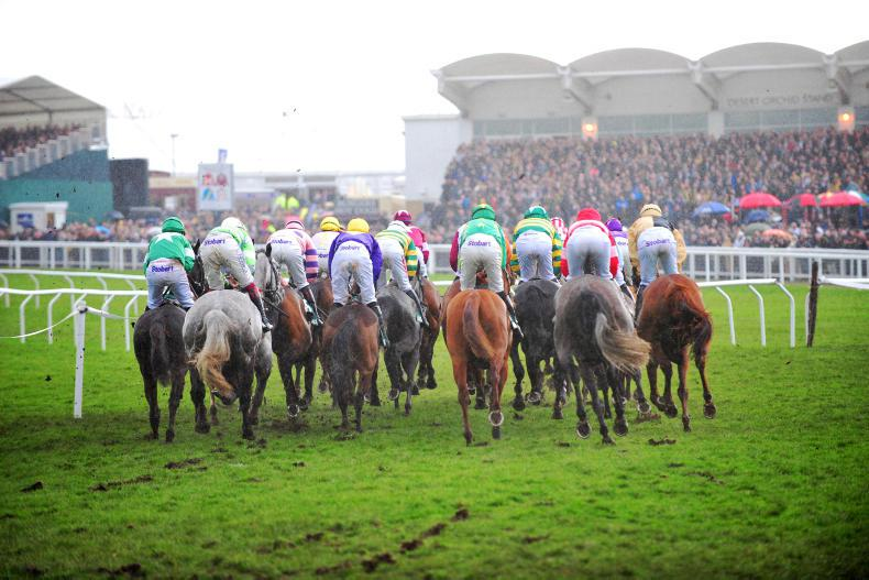 Scope of Cheltenham safety review defined