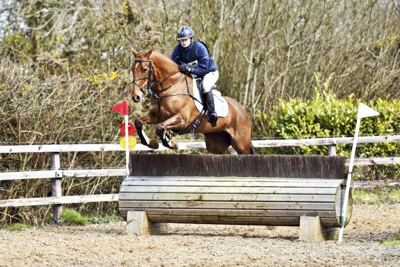 EVENTING:  Roncoroni makes a winning debut