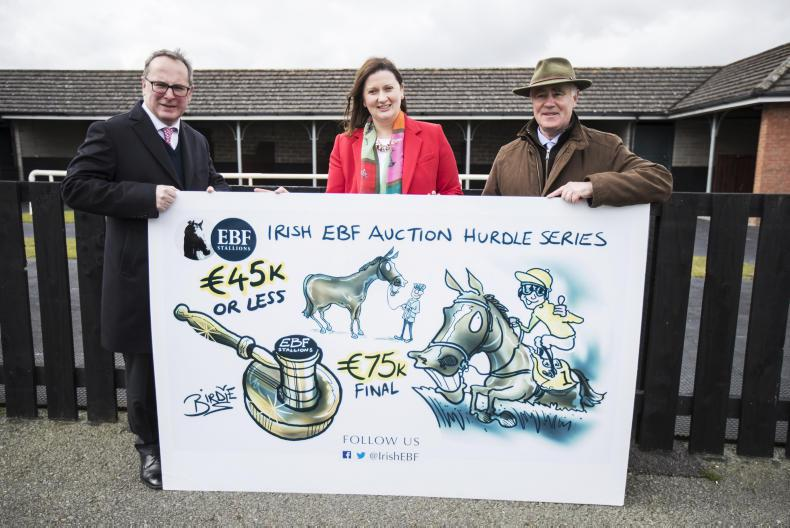 Irish EBF launches new series for lower-priced National Hunt horses