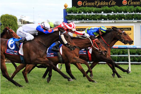 First Seal causes Rosehill surprise