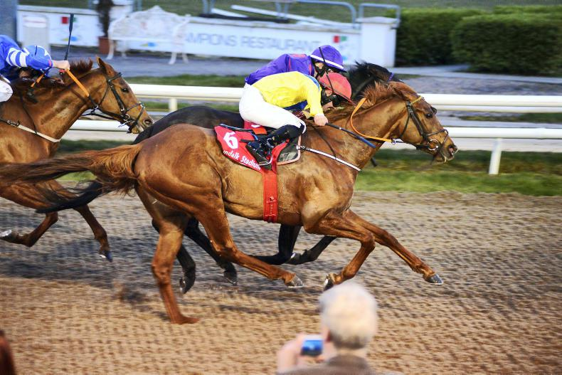DUNDALK FRIDAY: Financial Conduct to progress further