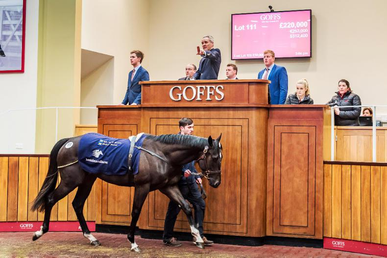 Michael O'Callaghan snaps up three of the top lots at Goffs UK Breeze-Up Sale