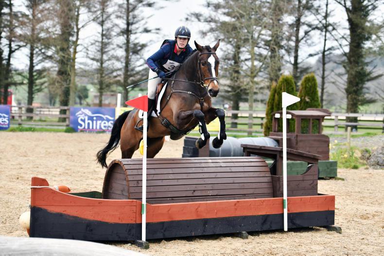 IRISH HORSE WORLD FIXTURES, April 14th 2018