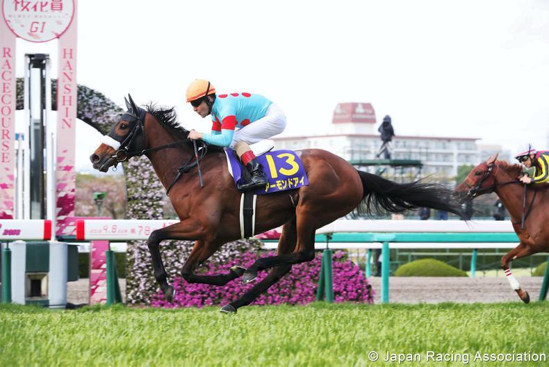 JAPAN: Almond Eye dominates the 1000 Guineas