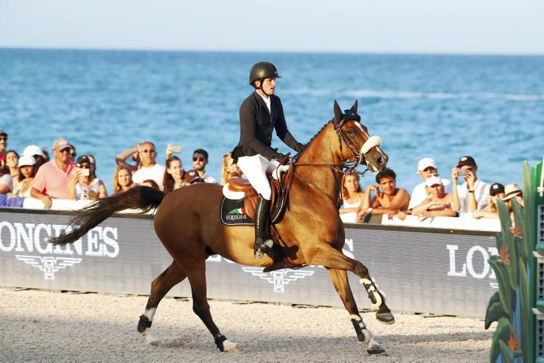 INTERNATIONAL: Show jumpers take to Miami Beach