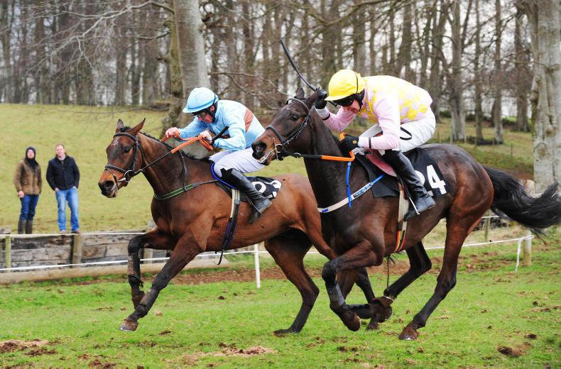 GOFFS AINTREE SALE: Record renewal sees a Malone double take