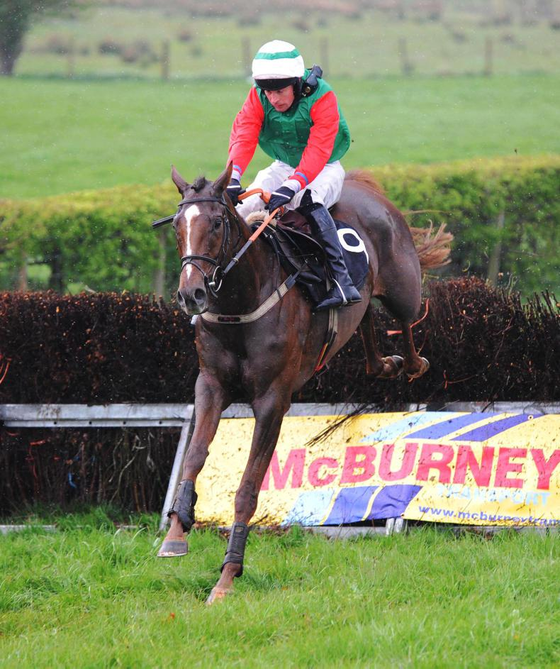 MARGIE MCLOONE: Largy Glory well bought by owner Scullion