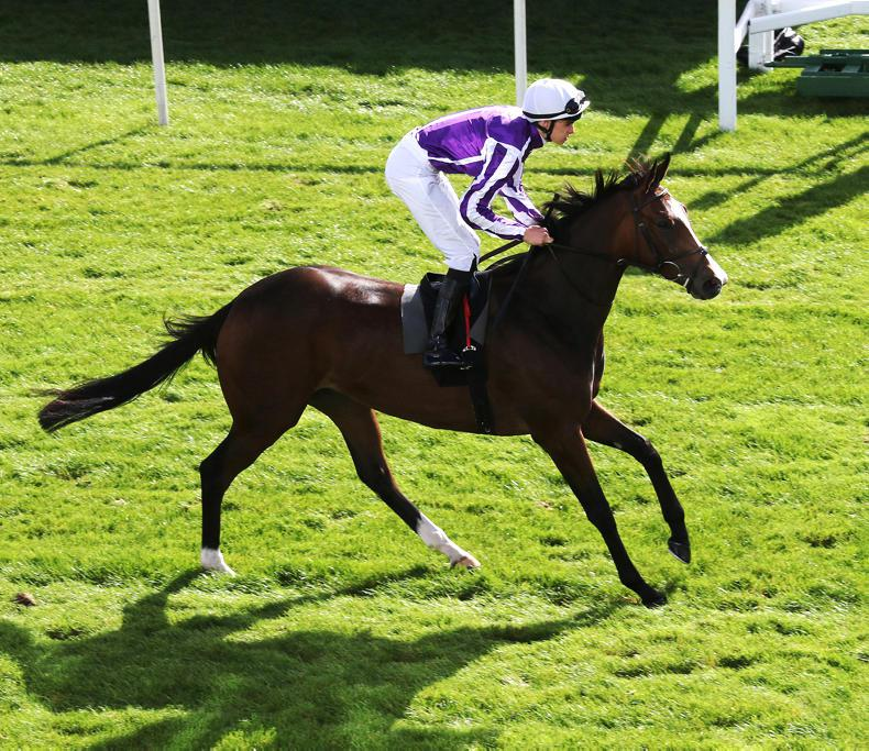 Happily heads Aidan O'Brien's team as 60 Oaks entries are revealed
