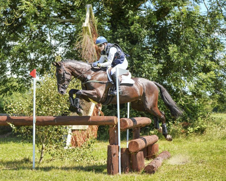 INTERNATIONAL: Cooley horses shine at Tryon