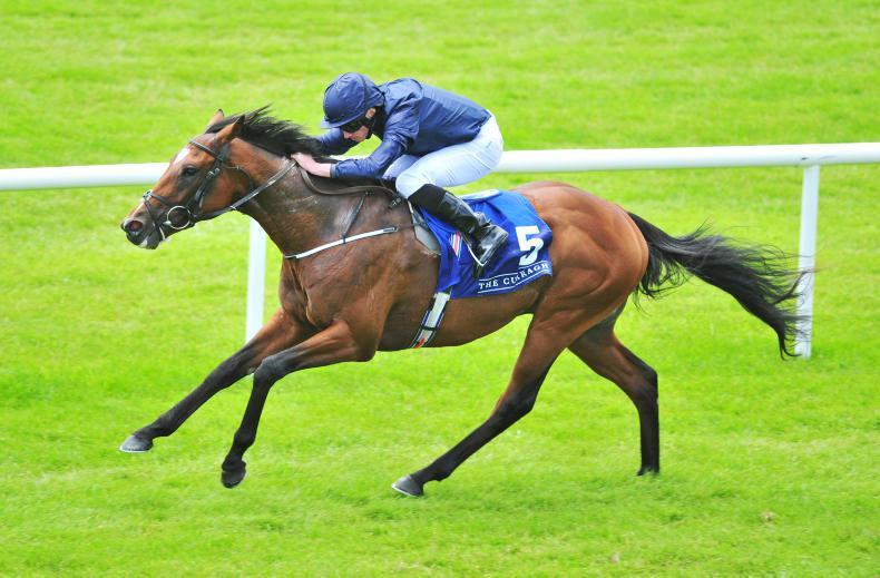 Gustav Klimt delights Aidan O'Brien with winning return at Leopardstown