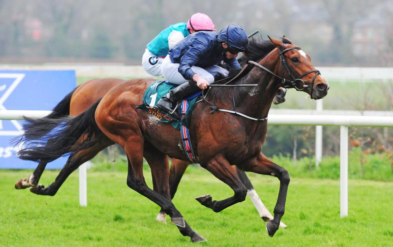 LEOPARDSTOWN SATURDAY: Gustav ready for the Guineas