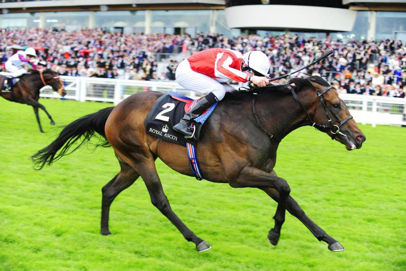 TATTERSALLS GUINEAS BREEZE-UP SALE: Irish drafts dominant